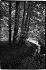 Bild StS_2008-0293_28_150x100.tif