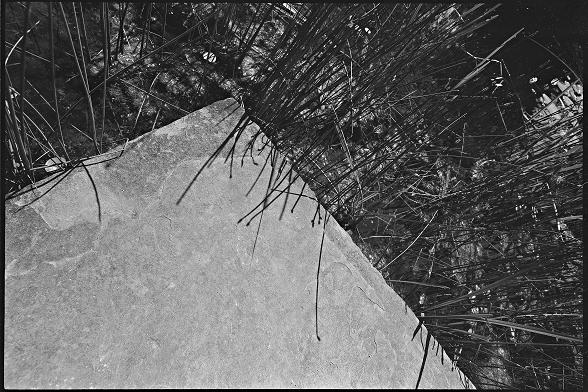 Bild StS_2008-0253_25_a-c_140x210.tif